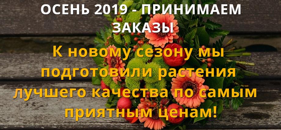 Осень 2019! Прием заказов. Мой Сад  - mygardenia.ru