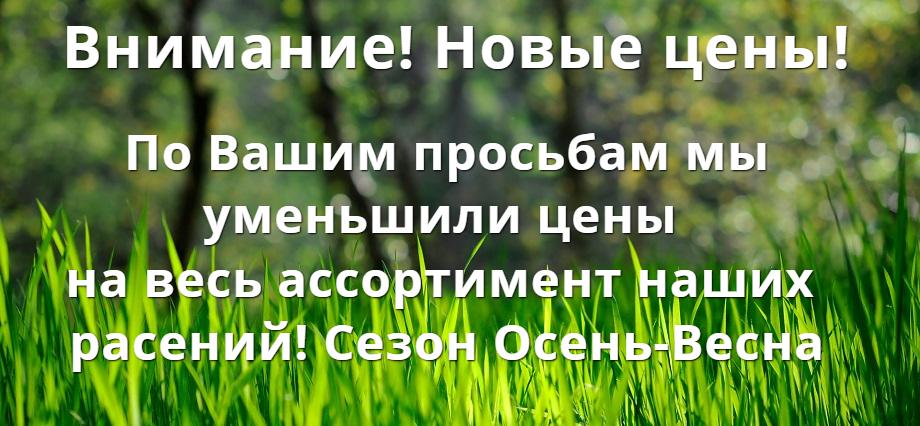Новые цены! Мой Сад - mygardenia.ru