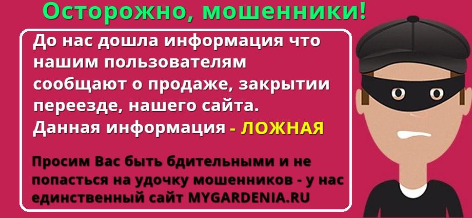 Mygardenia.ru - Мой Сад! Информационное сообщение!