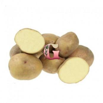 Семенной картофель Жуковский ранний (2кг)