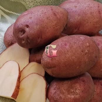 Семенной картофель Любава (2 кг)