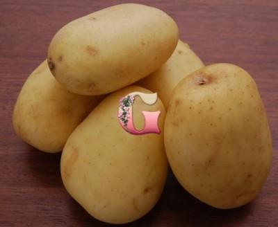 Семенной картофель Великан (2 кг)