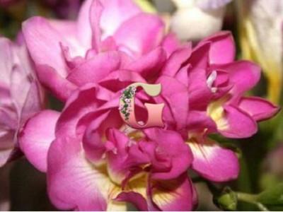 Фрезия махровая розовая | Freesia Pink (10шт)