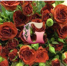 Роза Браун Шугар | Brawn Sugar (спрей- розы)